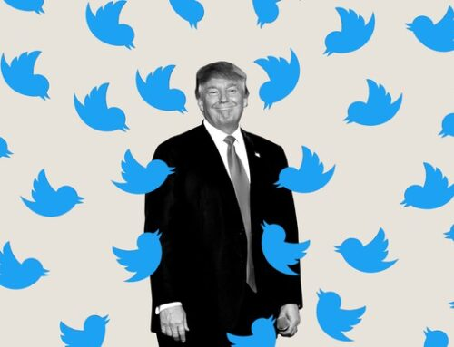 Twitter, Skandal Algoritma Olayının Ardından Kullanıcılara Resim Kırpma Özelliği Sundu